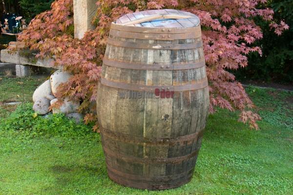 Rain barrel 500 l - Great Britain